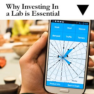 Why Investing in a Lab is Essential