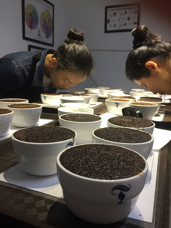 Yunnan: Arabica Supplier to the World?