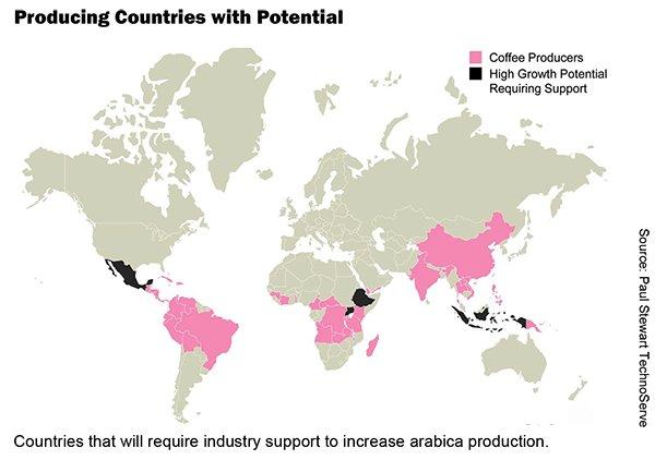 Arabica in 2050