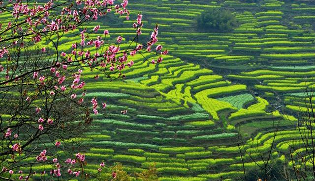 WTN160705_FEA_Wuyuan_huangling_scenery.jpg