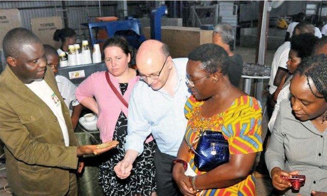 Uganda targets US coffee market