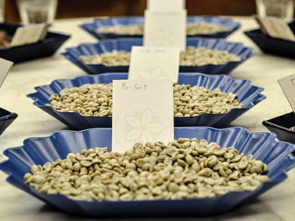 14i6_Uniformity_Cupping-Roasting_DSC_0001-2.jpg