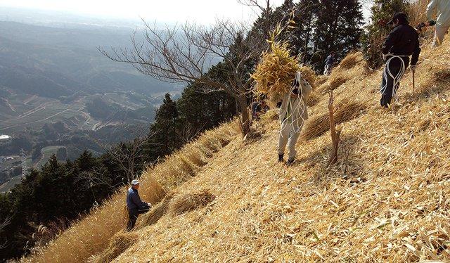 17i1_ART_Japan_FukamuiHarvesting_grasses.jpg