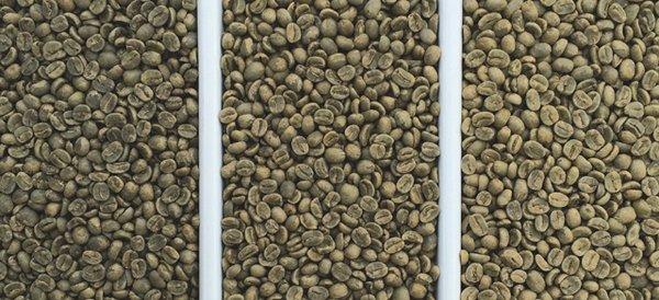 14i6_Uniformity_beans-640.jpg