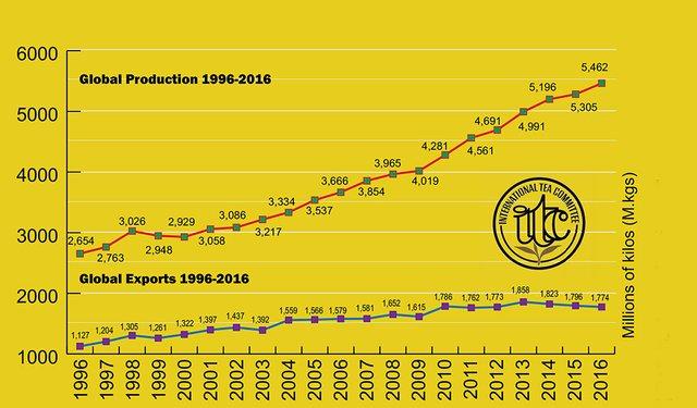 Tea Totals Rise as Exports Slide