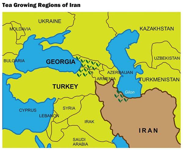 Revitalizing Iran