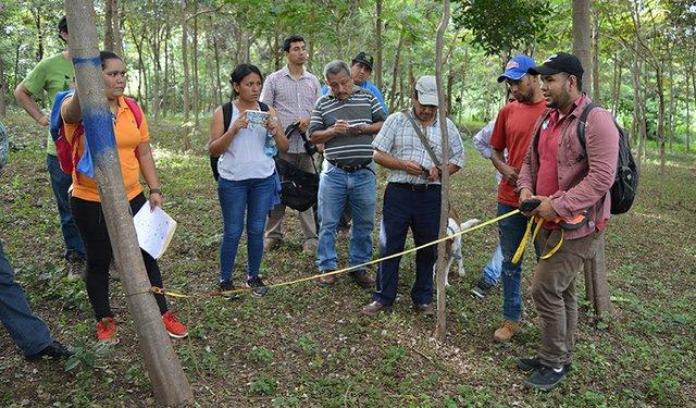 Training for Nicaragua Coffee Smallholders