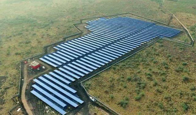 Solar Powered tea Garden