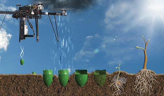 Drones Become Aerial Workhorses of Tea