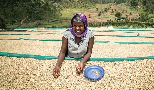Paying Fair Prices for Quality Coffee