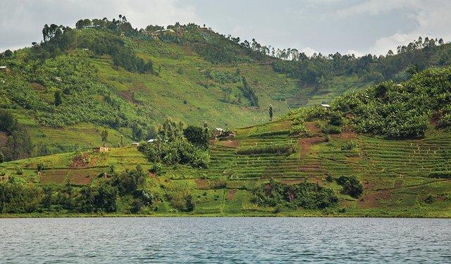 Reviving Rwanda