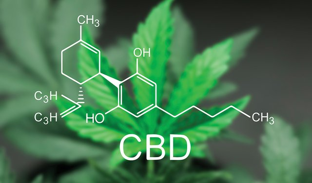 FDA Advises CBD is Not Safe