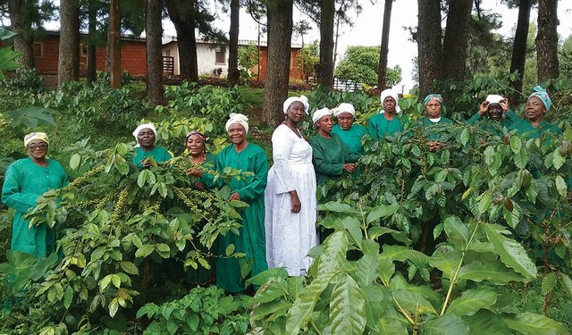 IWCA Promotes Gender Equity in Coffee