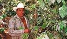 Newsletter-624x366-MexicoCoffee.jpg