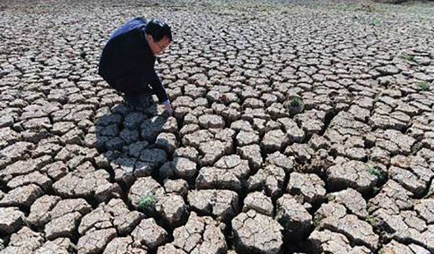 Newsletter-624x366-Drought-03.jpg