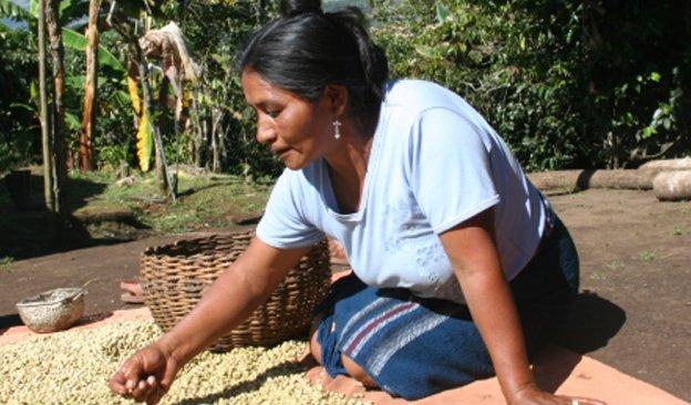 News-624-366px-CoffeeColombia-02.jpg