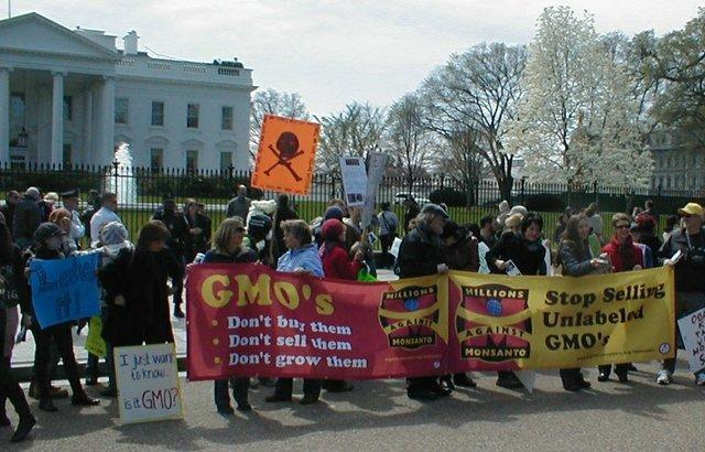 GMO Protesters