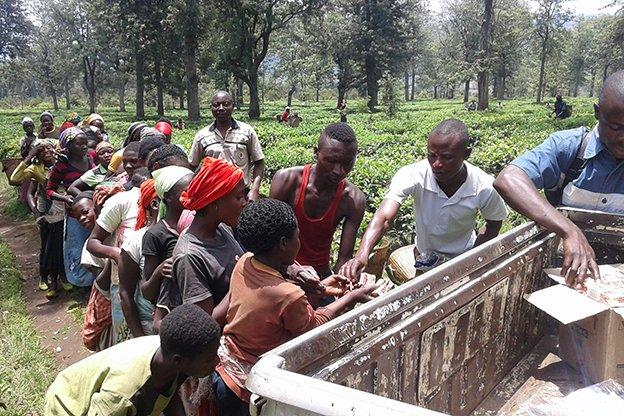16i1_REPORT_TEA_Congo_M'Bayo-624.jpg