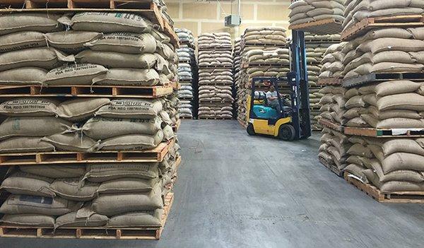costa-oro-warehouse-624.jpg